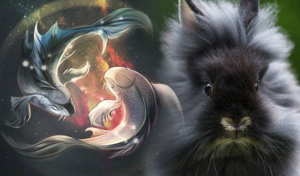 Черный Водяной Кролик - знак Рыбы