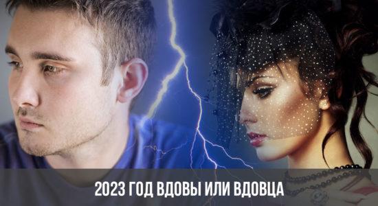 2023 год вдовы или вдовца