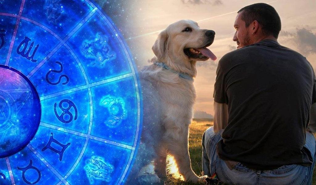 Гороскоп на 2023 год для мужчины Собаки