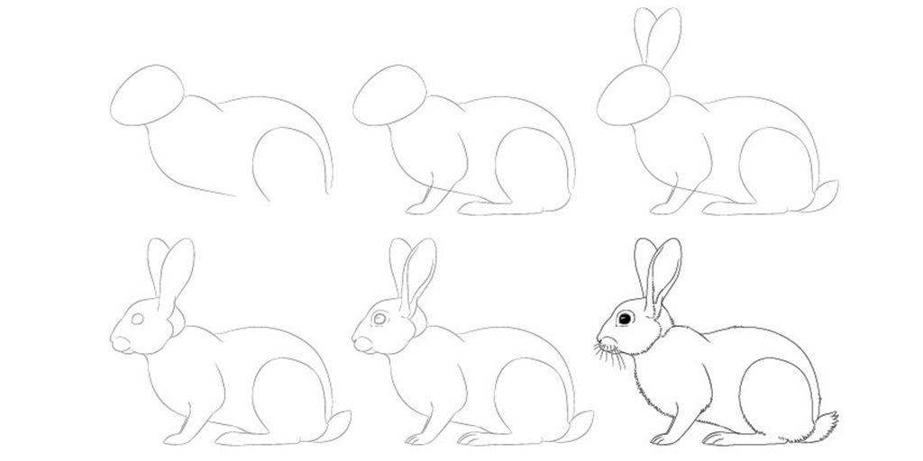 Рисунок кролика карандашом