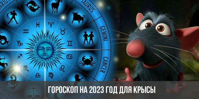 Гороскоп на 2023 год для Крысы