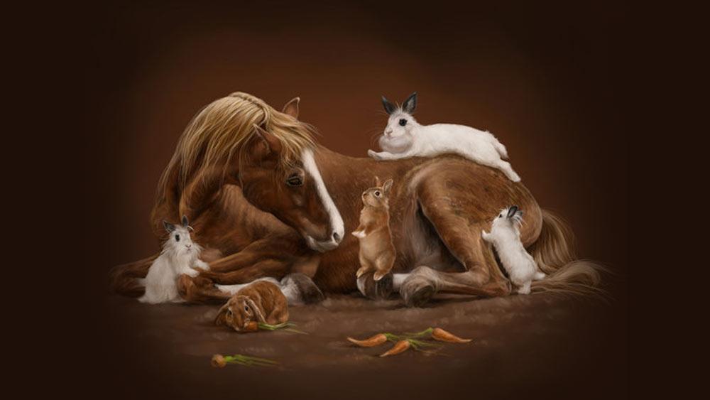 Что ждет рожденных в год Кролика 2023 тех, кто рожден в год Лошади