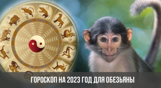 Гороскоп на 2023 год для Обезьяны