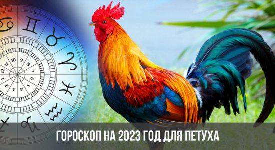 Гороскоп на 2023 год для Петуха