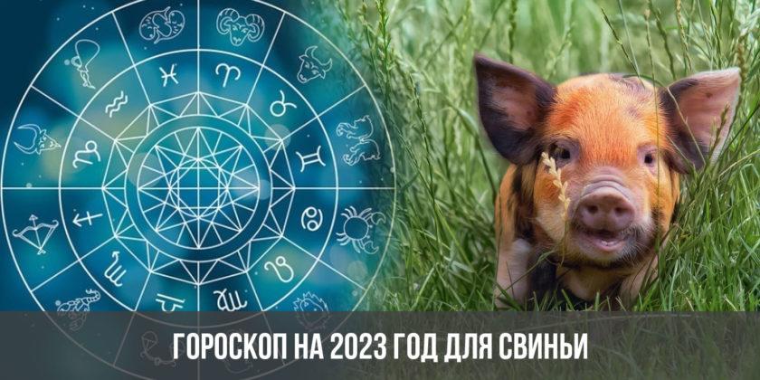 Гороскоп на 2023 год для Свиньи