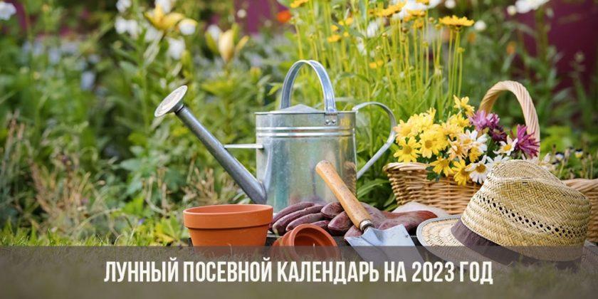 Лунный посевной календарь на 2023 год