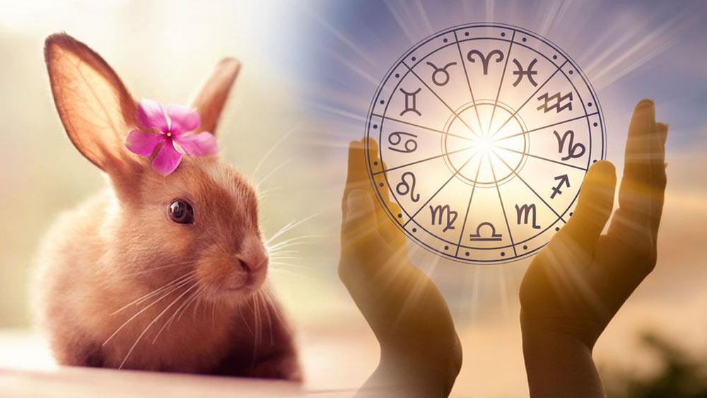 Особенности и характер символа 2023 года - Кролика (Зайца)