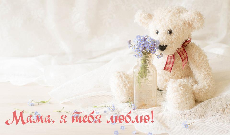 Акция «Мама, я тебя люблю!» ко дню матери в России и 2023 году