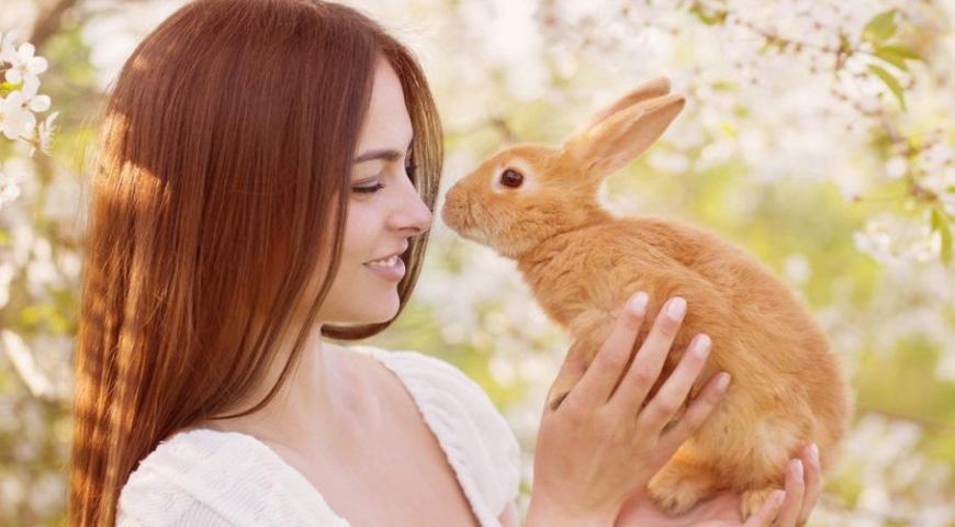 Гороскоп на 2023 год для женщины Кролика