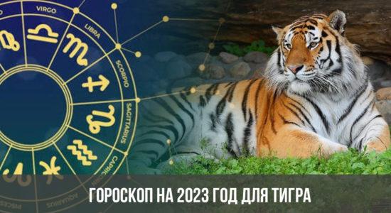 Гороскоп на 2023 год для Тигра