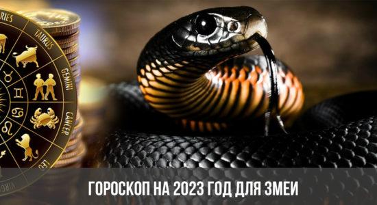 Гороскоп на 2023 год для Змеи