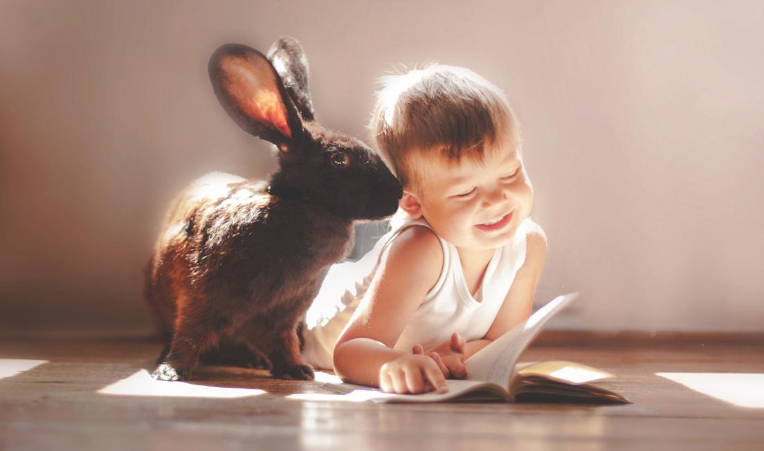 Какими будут мальчики, рожденные в 2023 году Кролика