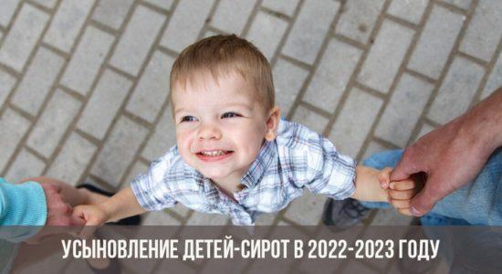 Усыновление детей-сирот в 2022-2023 году