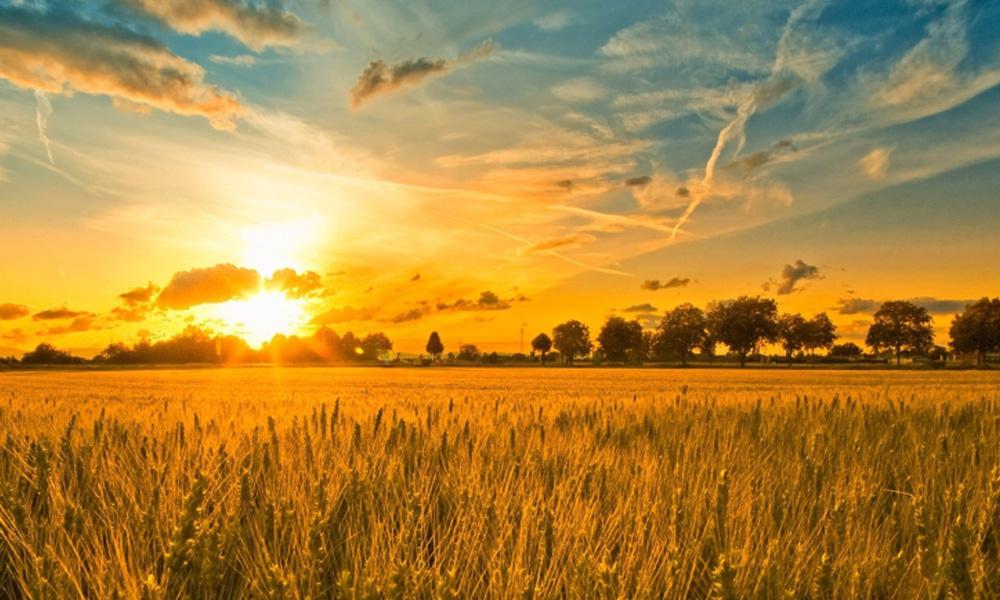 День летнего солнцестояния в 2023 году - дата, традиции, запреты