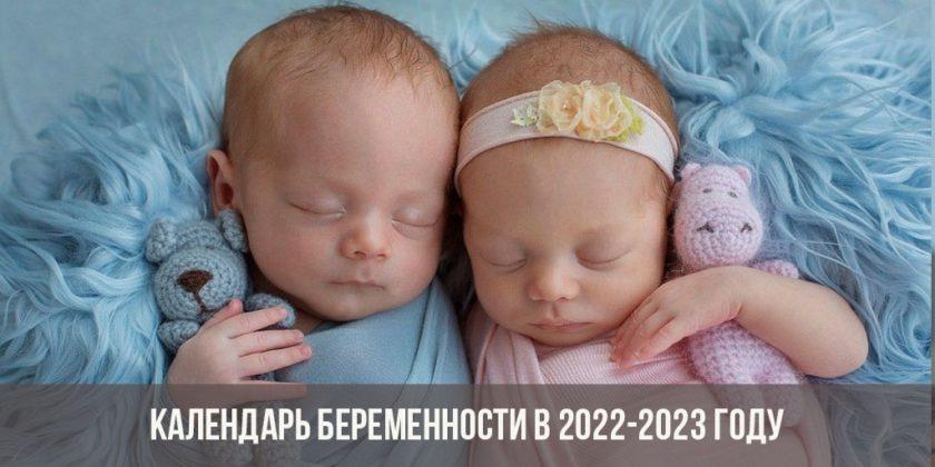 Календарь беременности в 2022-2023 году