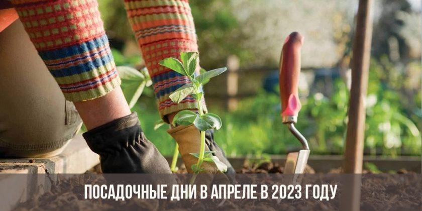 Посадочные дни в апреле 2023 года